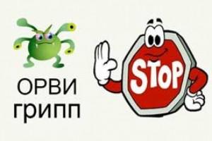 ne-zabolet-orvi-i-gripp_145493468493